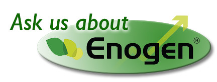 Ask Us About Enogen